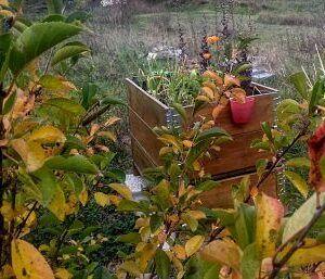 Abono-organico-ecologico-Huerto-otono-2021-Ekaia-Eko-Compost
