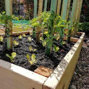 abono organico ecologico Mesa de cultivo Ekaia eko compost tienda