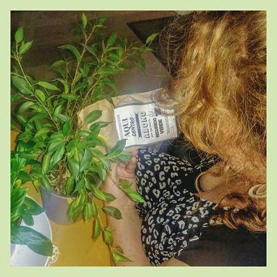 Abono organico Como abonar una planta con EKaia Eko Compost tienda