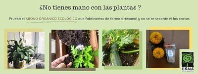 Ekaia-Eko-Compost-Como-cuidar-las-plantas