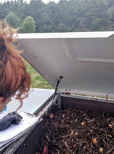 Compostaje-comunitario-Ekaia-Eko-compost