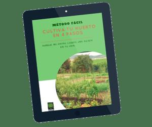 4 pasos para cultivar huerto