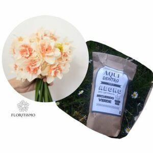 Narciso-doble-salmon-Floritismo-Ekaia_