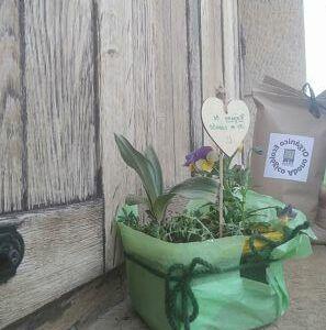 abono organico ecologico eco maceta- ekaia eko compost tienda