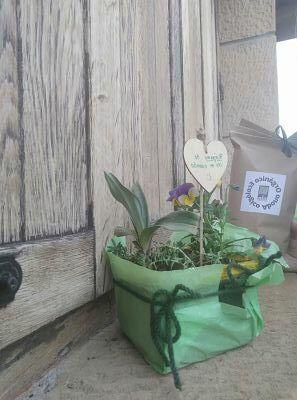 eco-maceta-ekaia-eko-compost-shop
