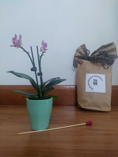 Sustrato especial para orquídeas- abono orgánico ecológico Ekaia eko compost